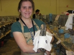 One of the 'Ghost Rabbits' entered in the Purina Costume Contest.  Nicola's threesome won the 'Scariest Hare' catag